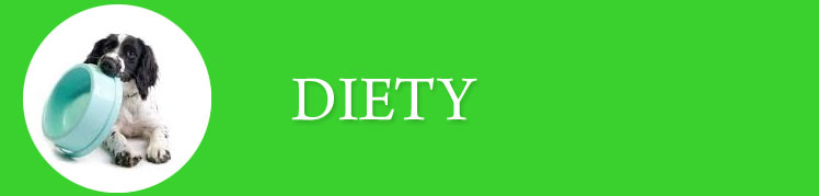 Diety_Baner