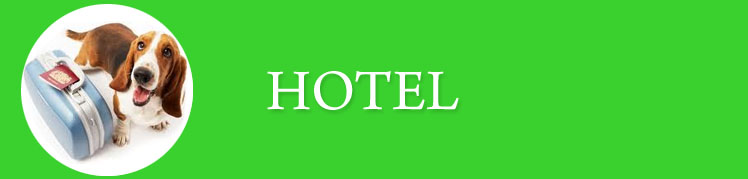 Hotel_Baner