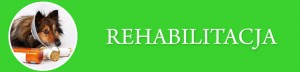 Rehabilitacja_Baner