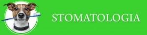 Stomatologia_Baner