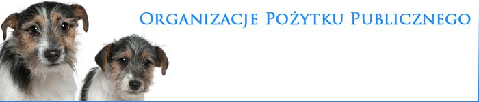 Organizacje_PP.png