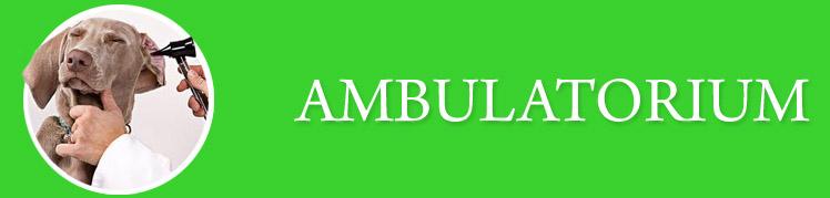 Ambulatorium_Baner