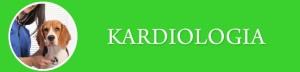 Kardiologia_Baner